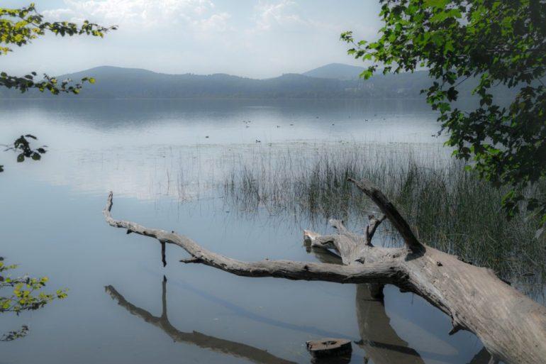 lake-930861_1920